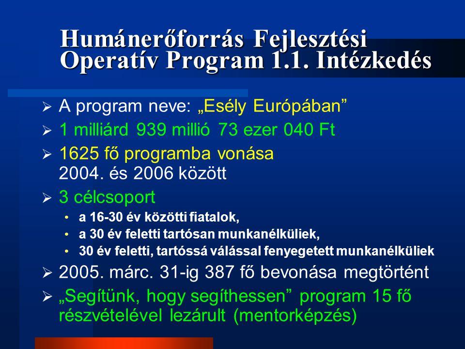 Humánerőforrás Fejlesztési Operatív Program 1.1. Intézkedés
