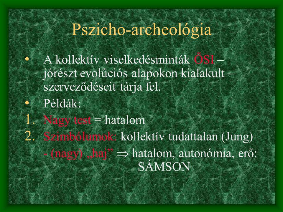 Pszicho-archeológia A kollektív viselkedésminták ŐSI – jórészt evolúciós alapokon kialakult – szerveződéseit tárja fel.