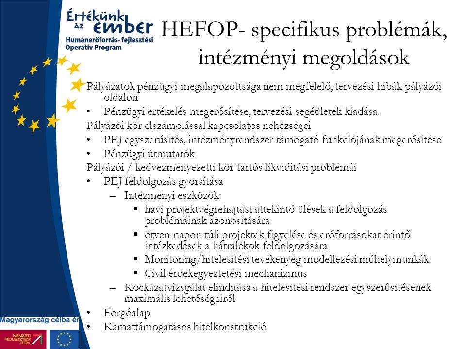 HEFOP- specifikus problémák, intézményi megoldások