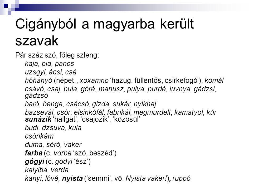 Cigányból a magyarba került szavak