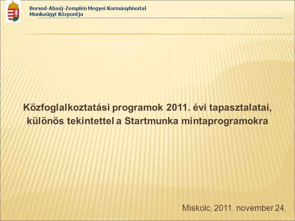 Közfoglalkoztatási programok 2011. évi tapasztalatai,