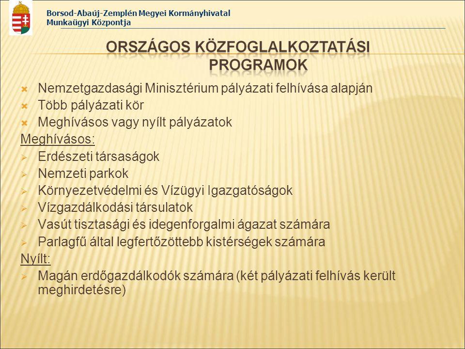 Nemzetgazdasági Minisztérium pályázati felhívása alapján