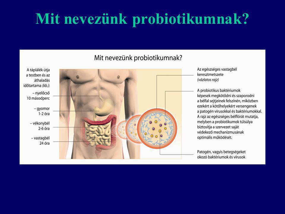 Mit nevezünk probiotikumnak