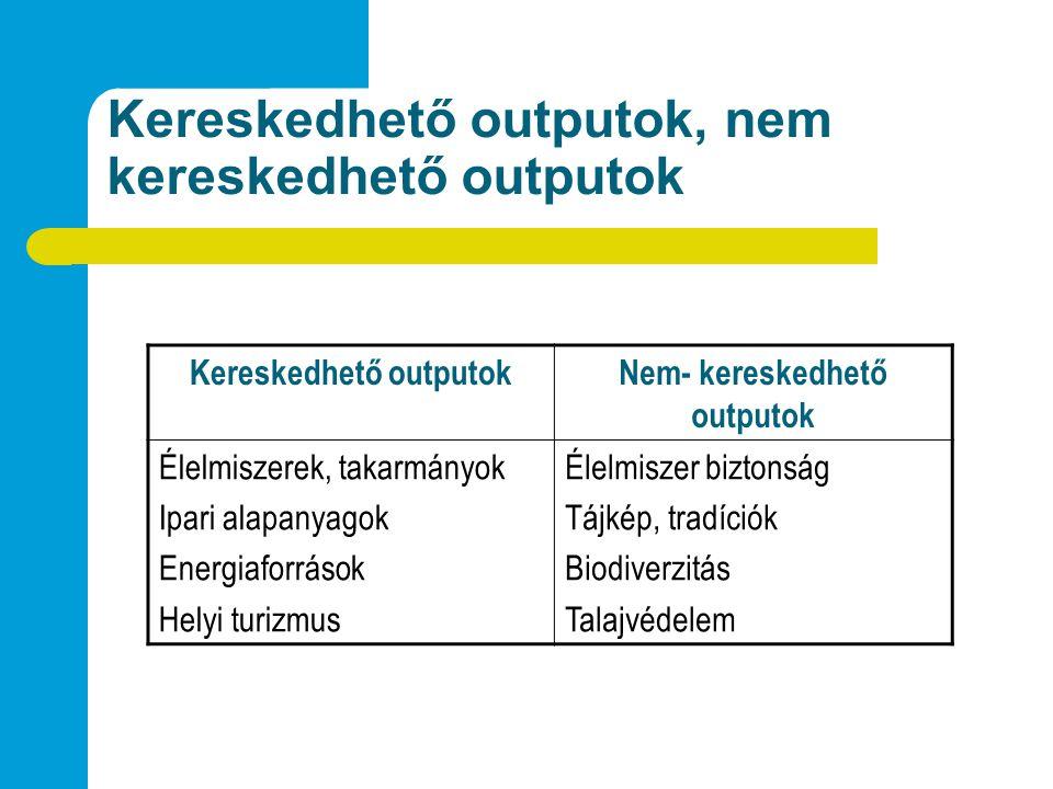 Kereskedhető outputok, nem kereskedhető outputok