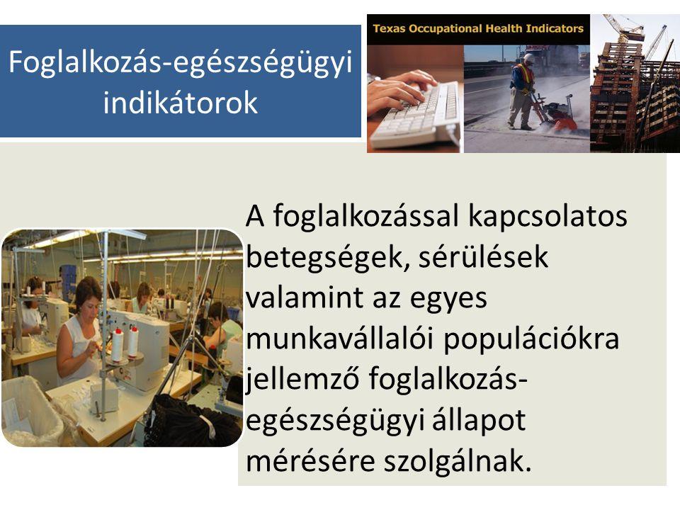 Foglalkozás-egészségügyi indikátorok