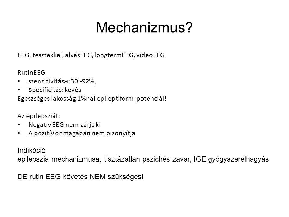 Mechanizmus EEG, tesztekkel, alvásEEG, longtermEEG, videoEEG RutinEEG