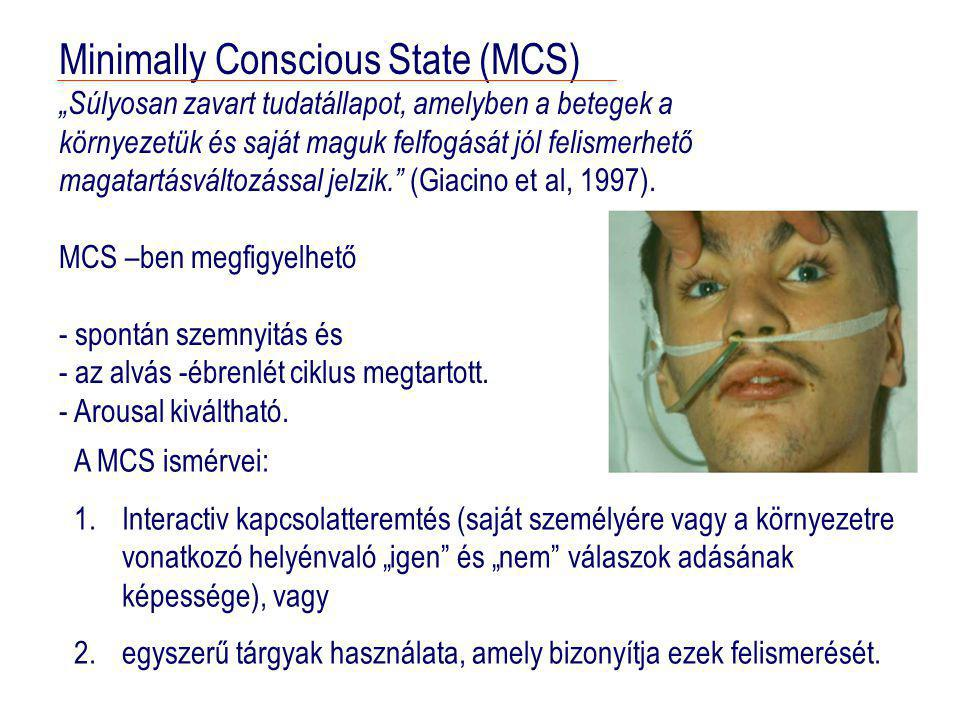Minimally Conscious State (MCS)