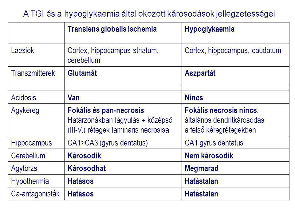 A TGI és a hypoglykaemia által okozott károsodások jellegzetességei