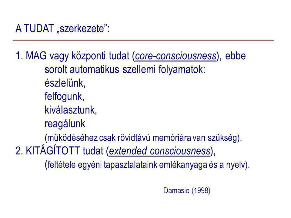 """A TUDAT """"szerkezete : 1. MAG vagy központi tudat (core-consciousness), ebbe sorolt automatikus szellemi folyamatok:"""
