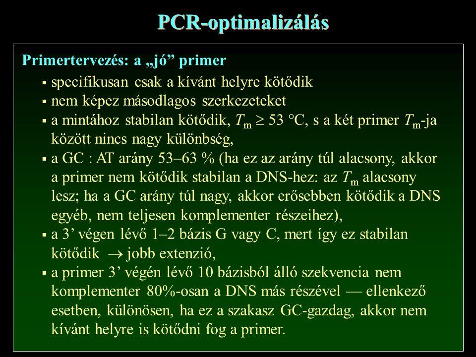 """PCR-optimalizálás Primertervezés: a """"jó primer"""