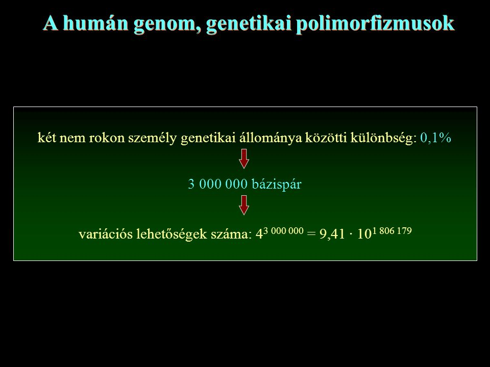 A humán genom, genetikai polimorfizmusok