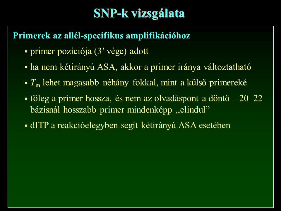 SNP-k vizsgálata Primerek az allél-specifikus amplifikációhoz