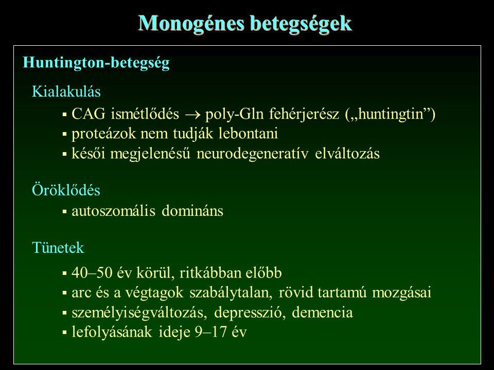 Monogénes betegségek Huntington-betegség Kialakulás
