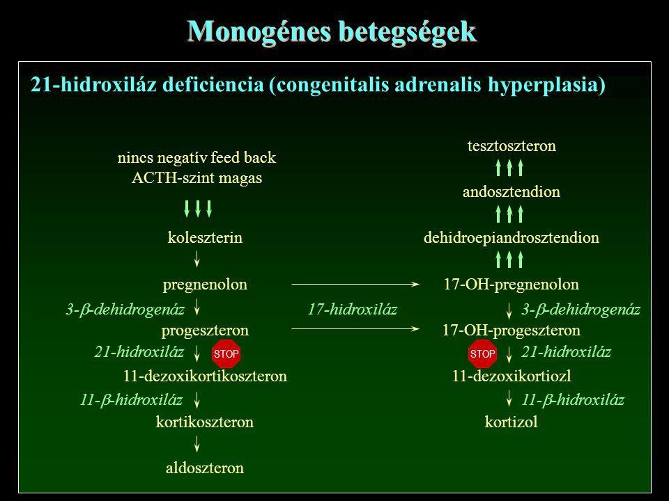 Monogénes betegségek 21-hidroxiláz deficiencia (congenitalis adrenalis hyperplasia) nincs negatív feed back.
