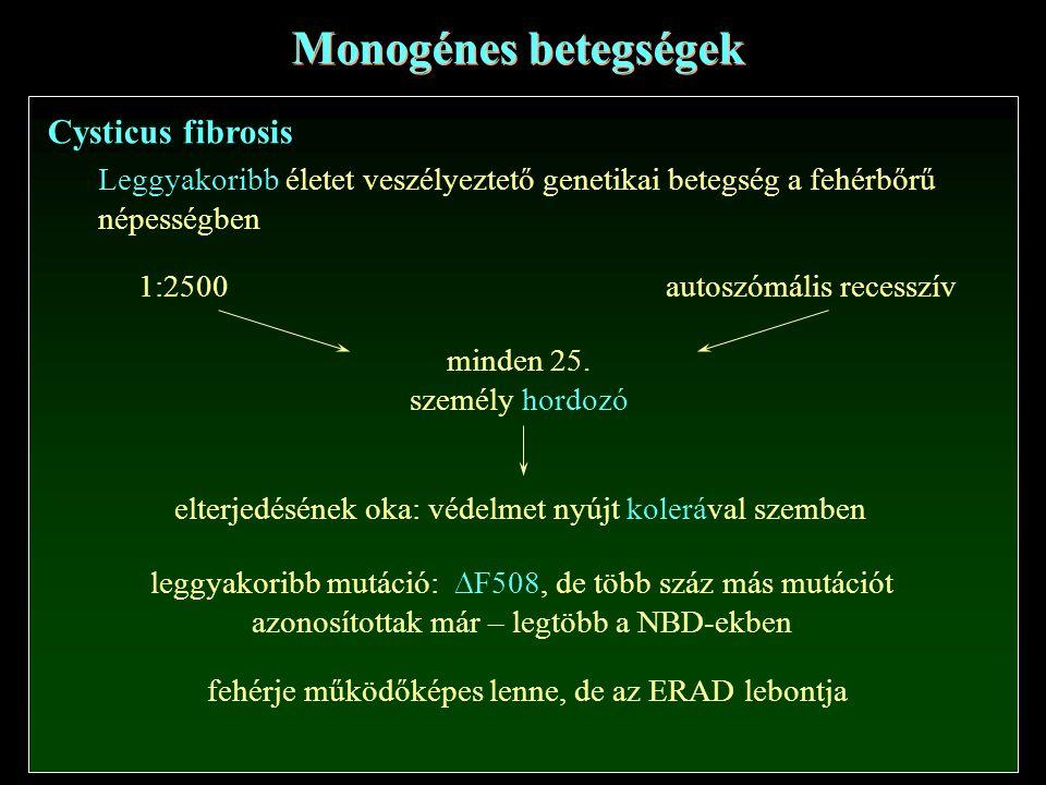 Monogénes betegségek Cysticus fibrosis