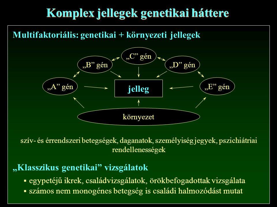 Komplex jellegek genetikai háttere