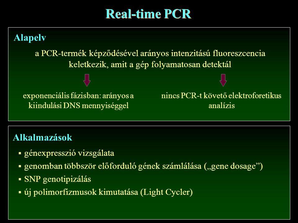 Real-time PCR Alapelv Alkalmazások