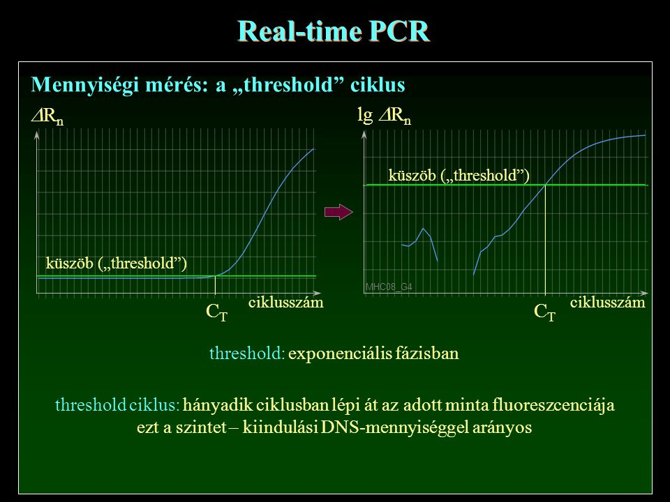 """Real-time PCR Mennyiségi mérés: a """"threshold ciklus Rn lgRn CT CT"""