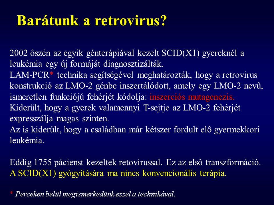 Barátunk a retrovirus 2002 ôszén az egyik génterápiával kezelt SCID(X1) gyereknél a. leukémia egy új formáját diagnosztizálták.