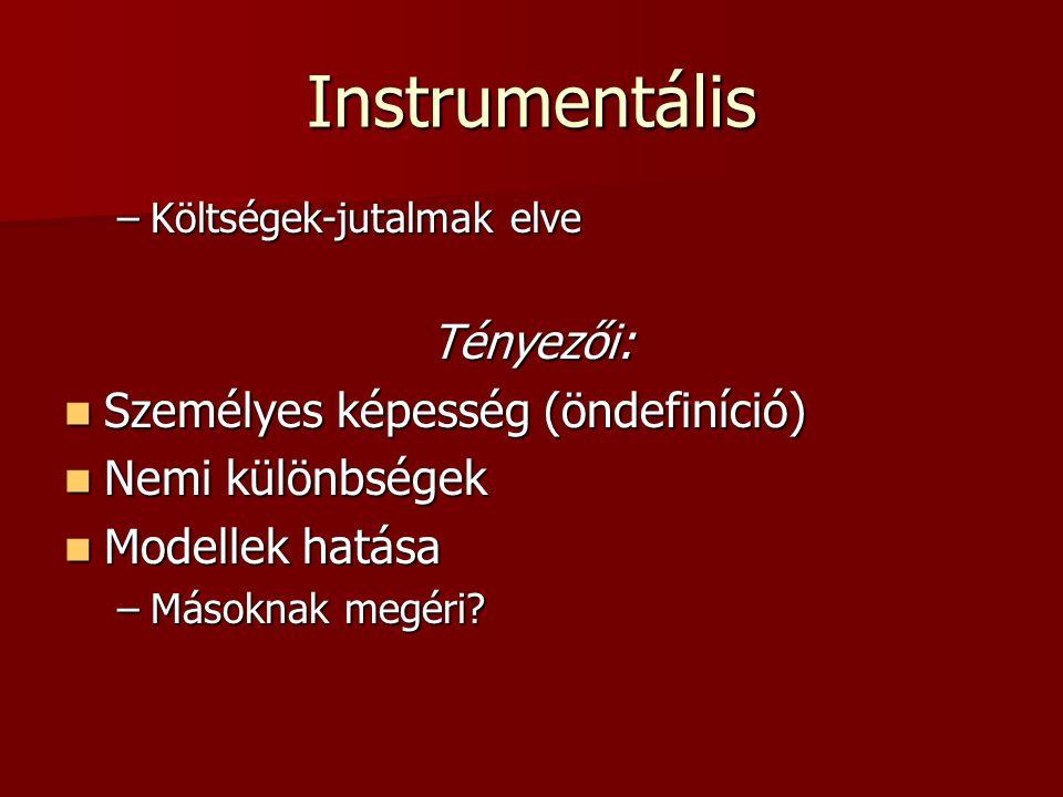Instrumentális Tényezői: Személyes képesség (öndefiníció)