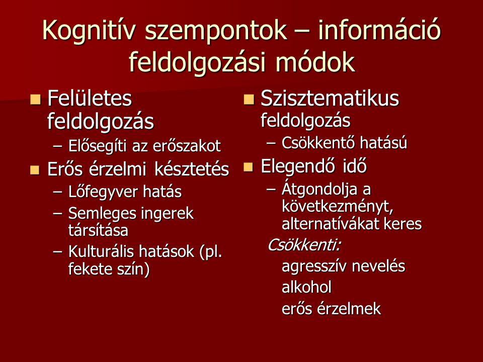 Kognitív szempontok – információ feldolgozási módok