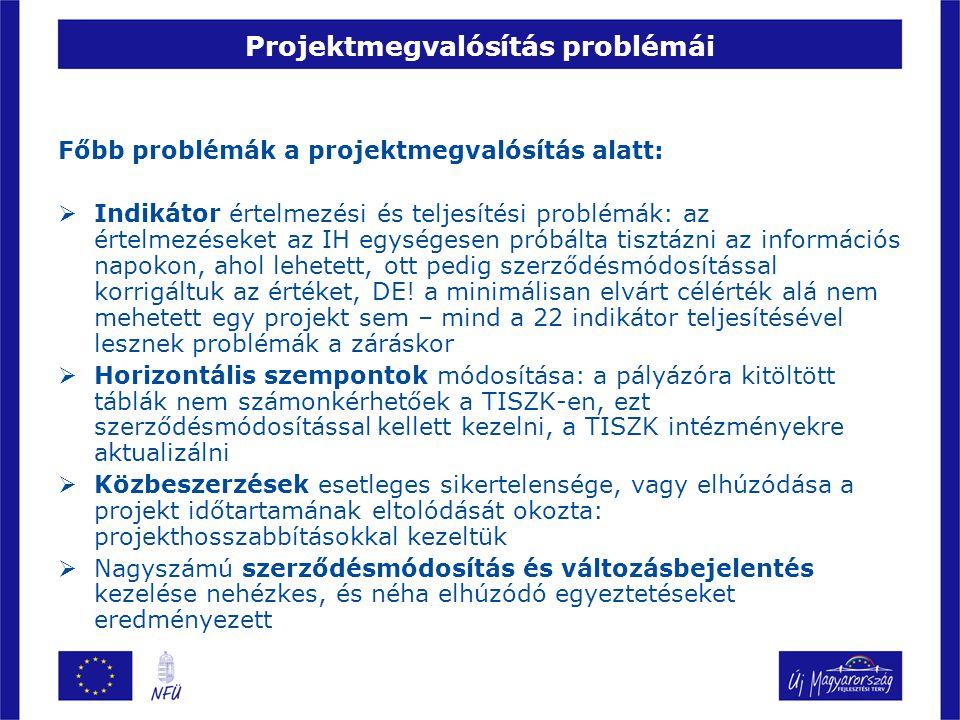Projektmegvalósítás problémái