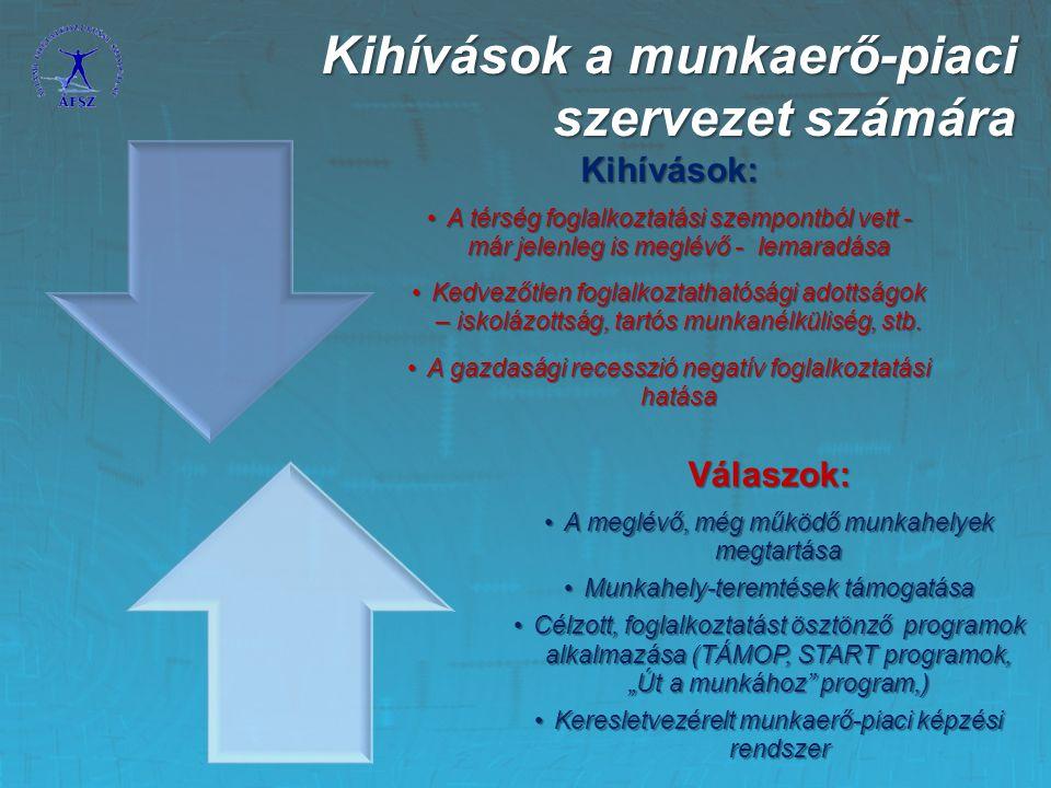 Kihívások a munkaerő-piaci szervezet számára
