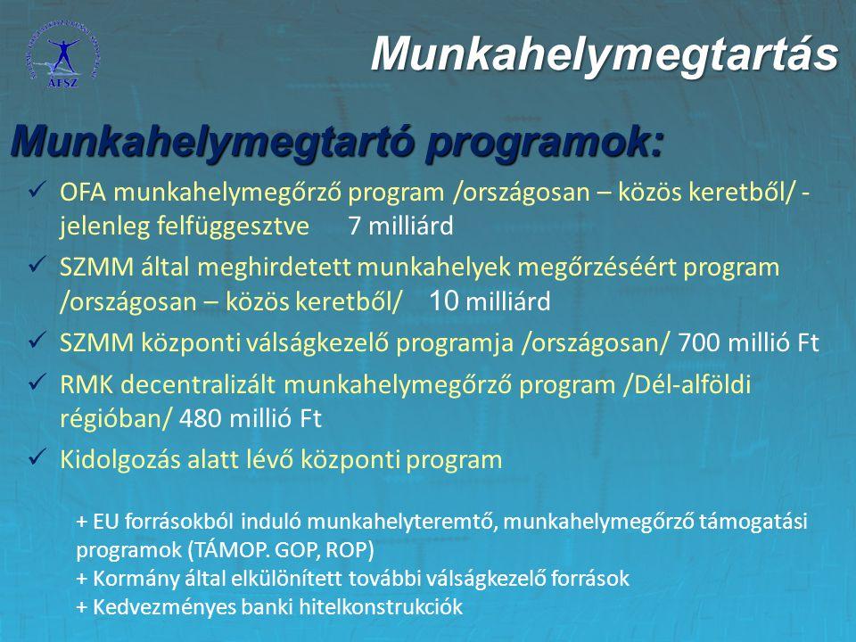 Munkahelymegtartás Munkahelymegtartó programok:
