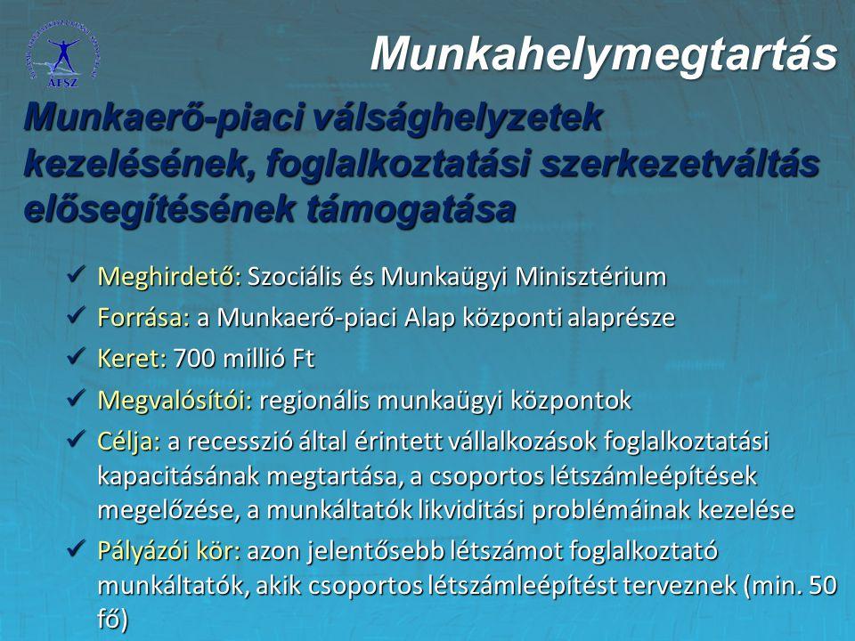 Munkahelymegtartás Munkaerő-piaci válsághelyzetek kezelésének, foglalkoztatási szerkezetváltás elősegítésének támogatása.