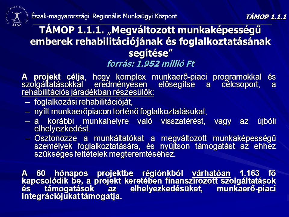 """TÁMOP 1.1.1 TÁMOP 1.1.1. """"Megváltozott munkaképességű emberek rehabilitációjának és foglalkoztatásának segítése forrás: 1.952 millió Ft."""