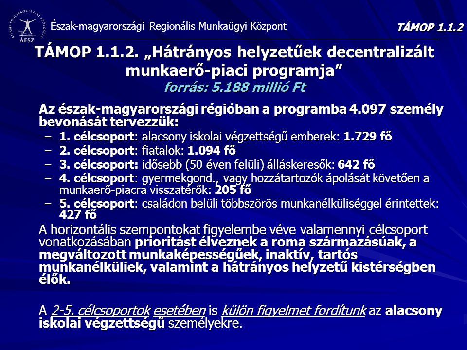 """TÁMOP 1.1.2 TÁMOP 1.1.2. """"Hátrányos helyzetűek decentralizált munkaerő-piaci programja forrás: 5.188 millió Ft."""