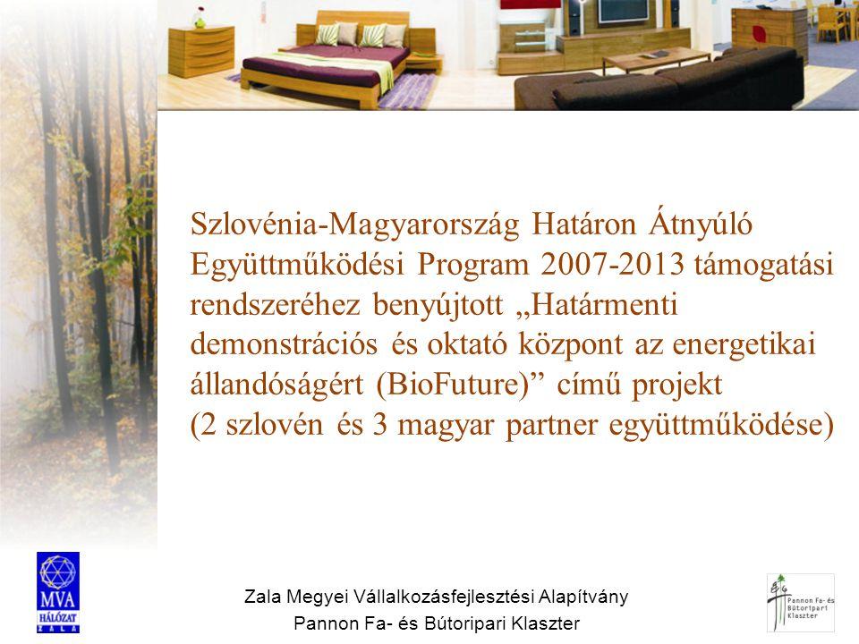 """Szlovénia-Magyarország Határon Átnyúló Együttműködési Program 2007-2013 támogatási rendszeréhez benyújtott """"Határmenti demonstrációs és oktató központ az energetikai állandóságért (BioFuture) című projekt (2 szlovén és 3 magyar partner együttműködése)"""