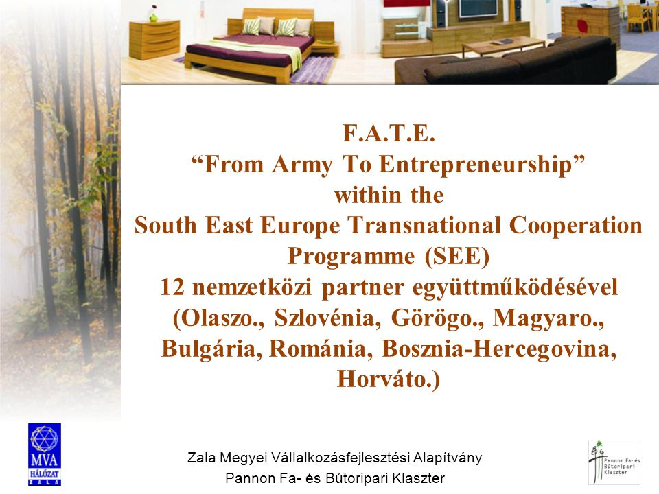 F.A.T.E. From Army To Entrepreneurship within the South East Europe Transnational Cooperation Programme (SEE) 12 nemzetközi partner együttműködésével (Olaszo., Szlovénia, Görögo., Magyaro., Bulgária, Románia, Bosznia-Hercegovina, Horváto.)