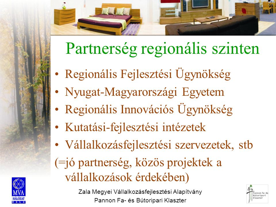 Partnerség regionális szinten