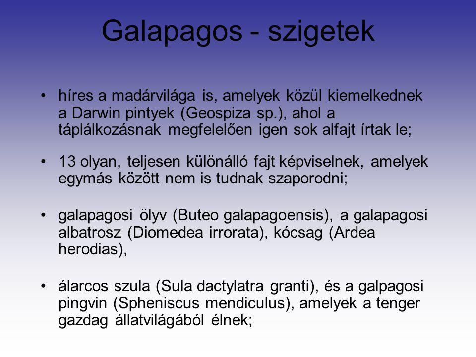 Galapagos - szigetek