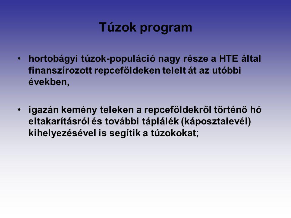 Túzok program hortobágyi túzok-populáció nagy része a HTE által finanszírozott repceföldeken telelt át az utóbbi években,