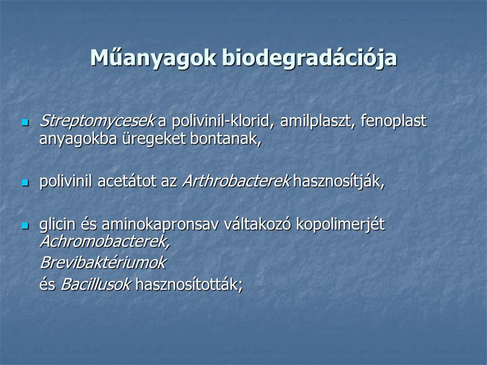 Műanyagok biodegradációja