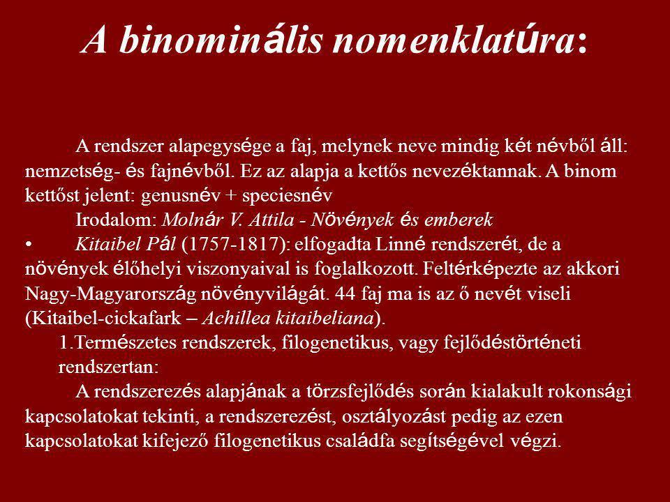 A binominális nomenklatúra: