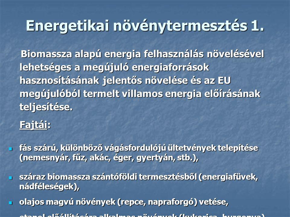 Energetikai növénytermesztés 1.