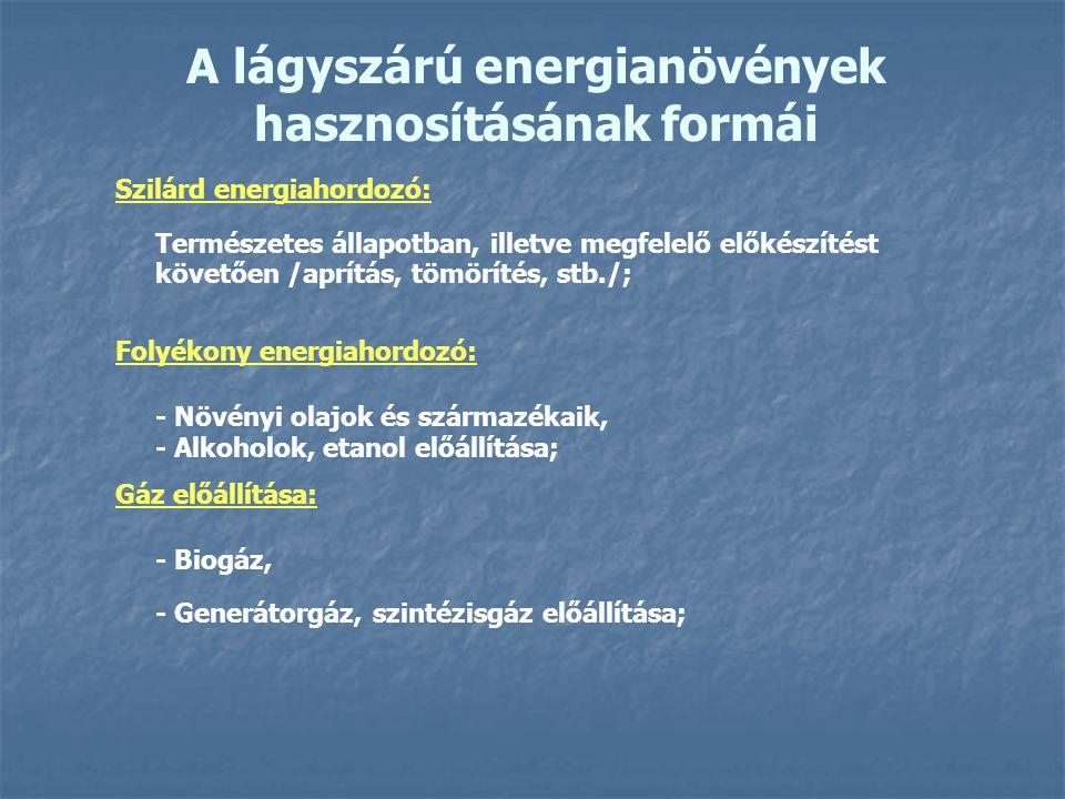 A lágyszárú energianövények hasznosításának formái