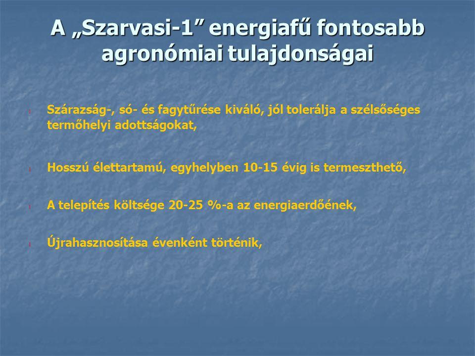 "A ""Szarvasi-1 energiafű fontosabb agronómiai tulajdonságai"