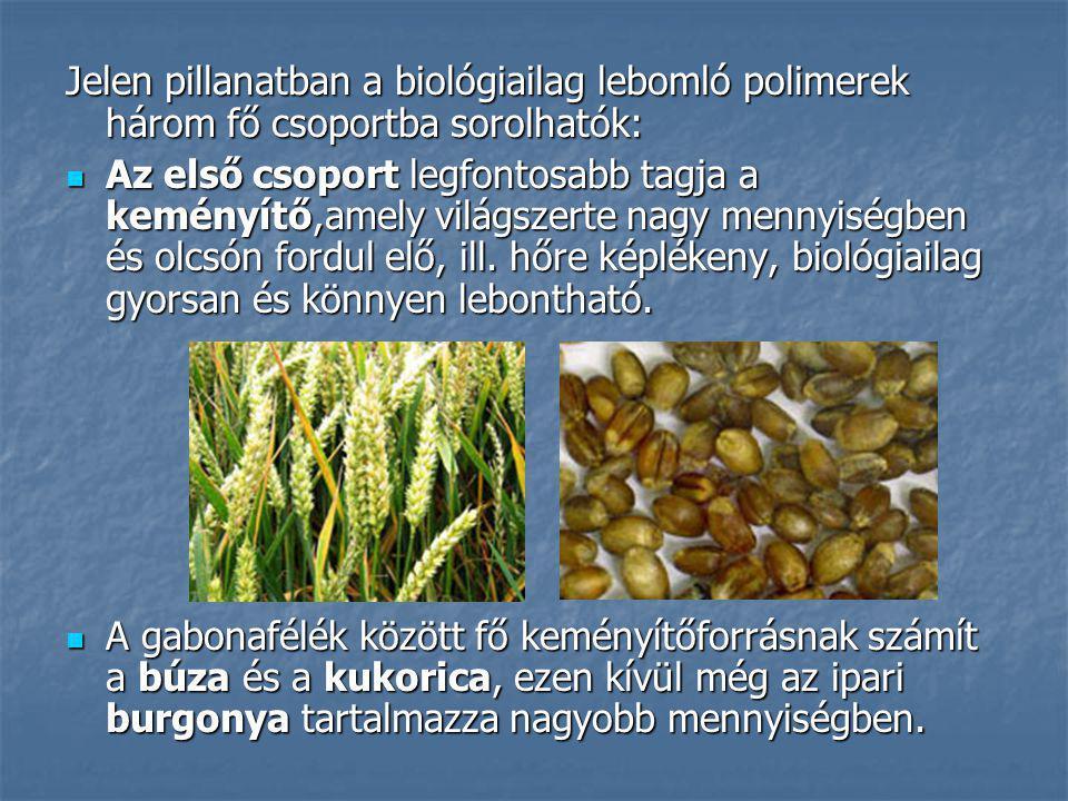 Jelen pillanatban a biológiailag lebomló polimerek három fő csoportba sorolhatók: