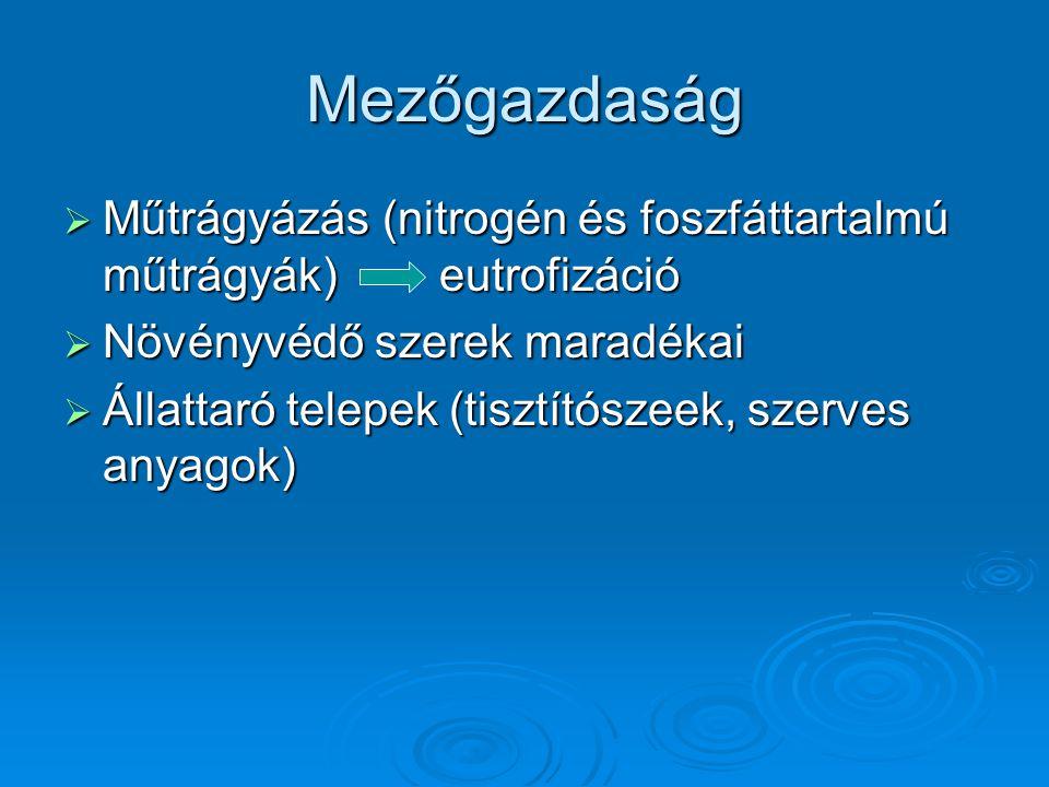 Mezőgazdaság Műtrágyázás (nitrogén és foszfáttartalmú műtrágyák) eutrofizáció. Növényvédő szerek maradékai.