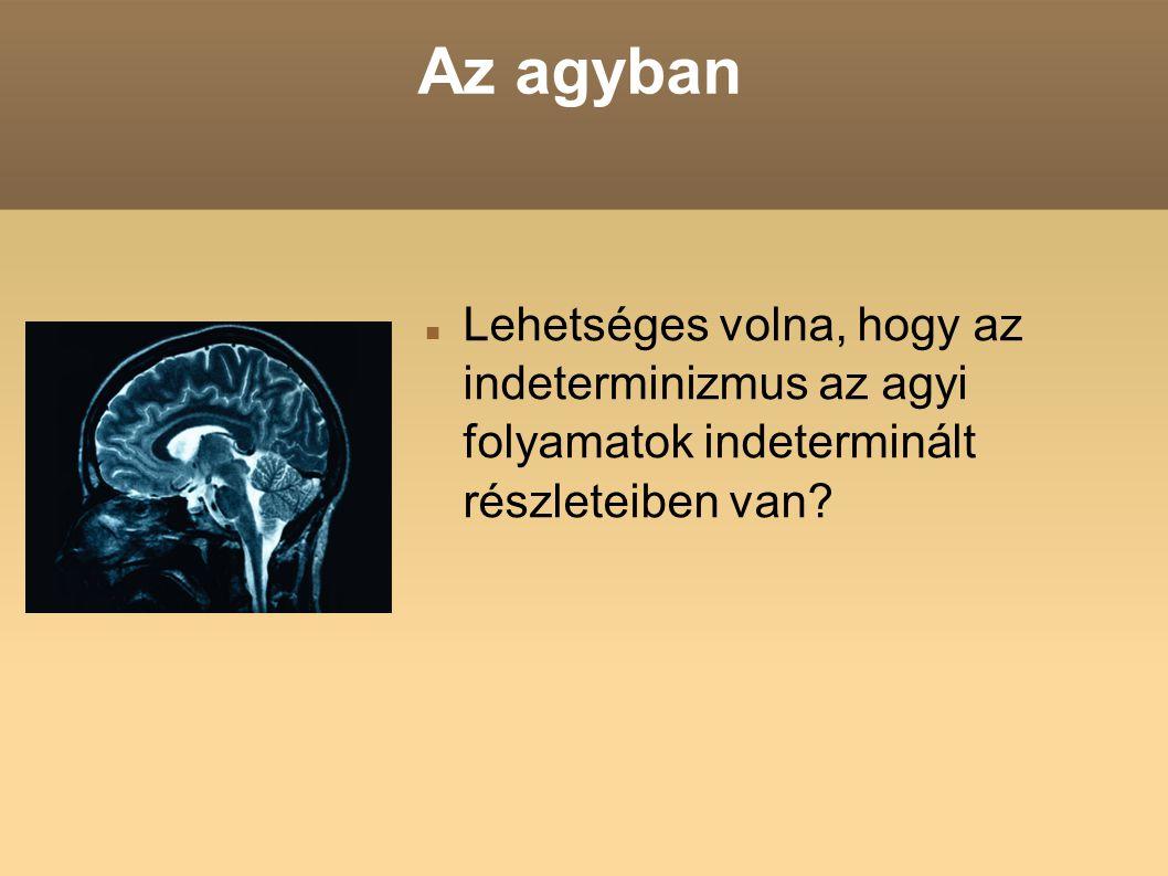 Az agyban Lehetséges volna, hogy az indeterminizmus az agyi folyamatok indeterminált részleteiben van