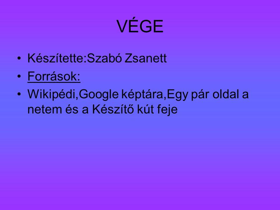 VÉGE Készítette:Szabó Zsanett Források: