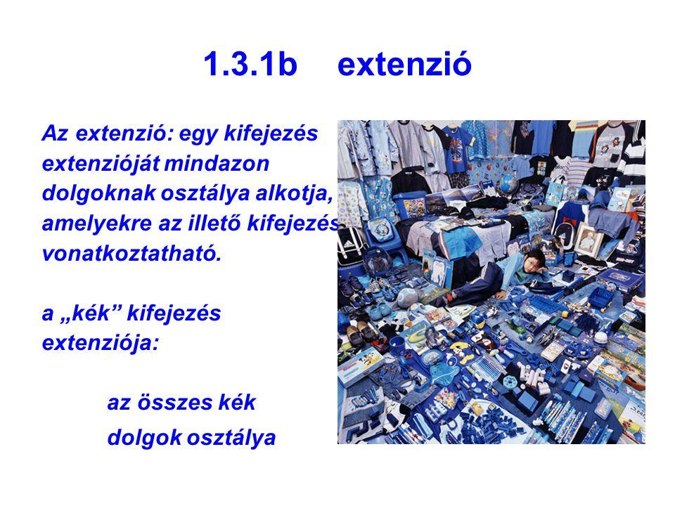 1.3.1b extenzió Az extenzió: egy kifejezés extenzióját mindazon