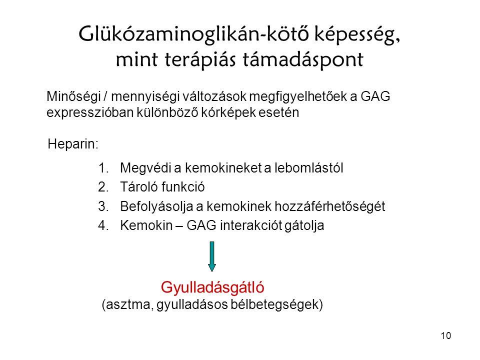 Glükózaminoglikán-kötő képesség, mint terápiás támadáspont