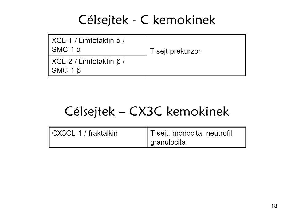 Célsejtek - C kemokinek