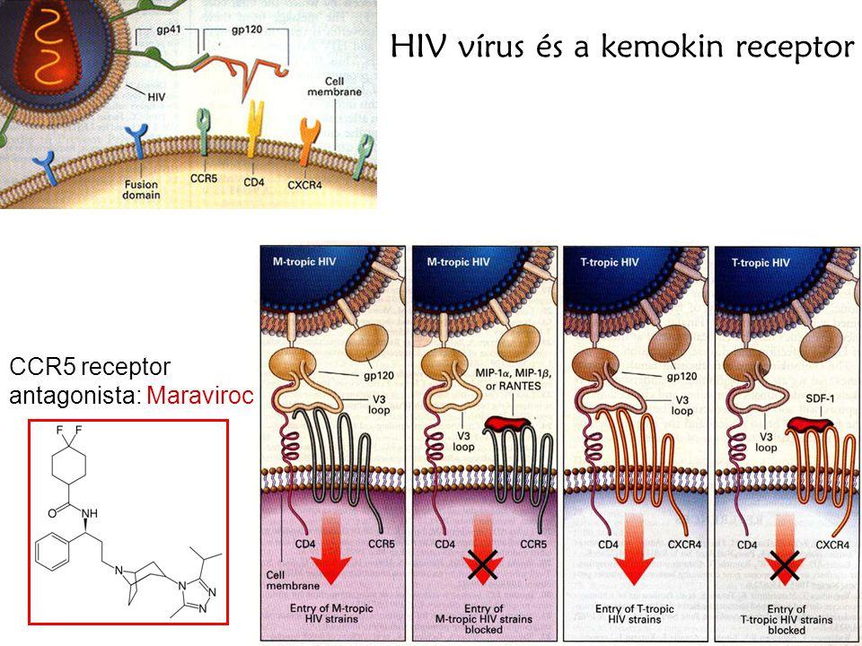 HIV vírus és a kemokin receptor