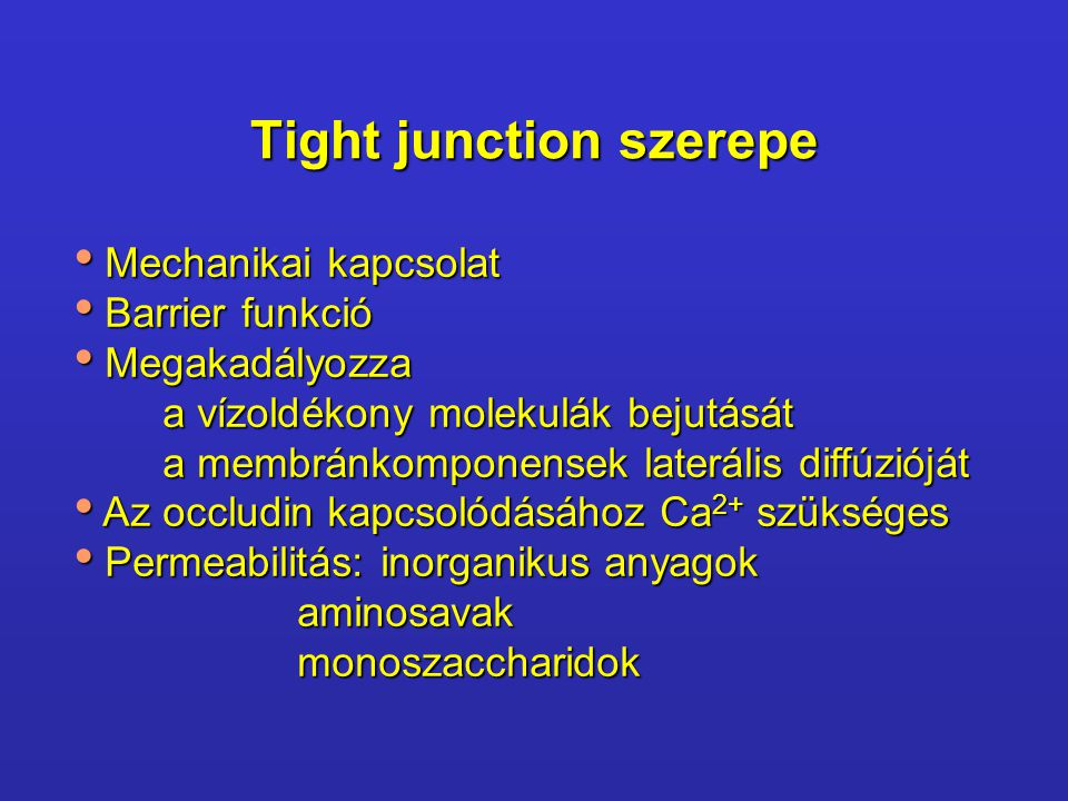 Tight junction szerepe